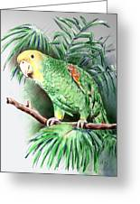 Yellow-headed Amazon Parrot Greeting Card