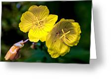 Yellow Is Gold Among The Flowers Greeting Card