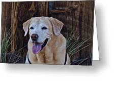 Yellow Lab At Bodie Greeting Card