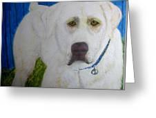 Yellow Labrador Retriever Original Acrylic Painting Greeting Card