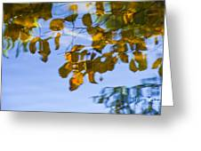 Yellow Leaf Reflections Greeting Card