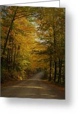 Yellow Leaves Road Greeting Card