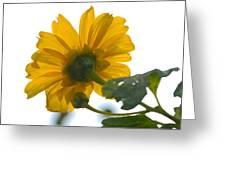 Yellow Light Greeting Card