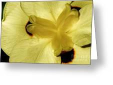 Yellow Maze Greeting Card