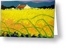 yellow Meadow Ireland Greeting Card