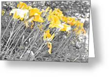 Yellow Moment In Time Greeting Card