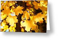 Yellow Nature Tree Leaves Art Prints Bright Baslee Troutman Greeting Card