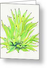 Yellow Octopus Agave Greeting Card