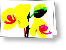 Yellow Orchids Abstract Greeting Card