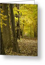 Yellow Path Greeting Card