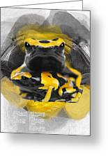 Yellow Poison Dart Frog No 04 Greeting Card