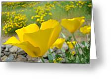 Yellow Poppy Flower Meadow Landscape Art Prints Baslee Troutman Greeting Card