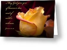 Yellow-red Rose-p045 Greeting Card