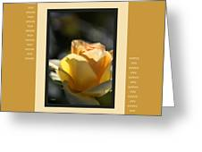 Yellow Rose Bud Dreams With Design Greeting Card