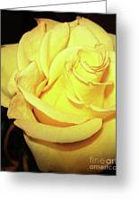 Yellow Rose For Friendship Greeting Card