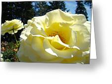 Yellow Rose Garden Landscape 3 Roses Art Prints Baslee Troutman Greeting Card