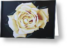 Tea Rozsa Greeting Card
