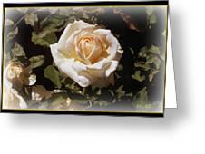 Yellow Rose Of Texas Greeting Card by Trina Prenzi