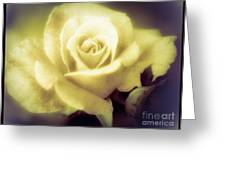 Yellow Rose Smoky Misty Look Greeting Card