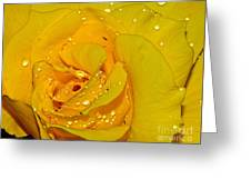 Yellow Rose With Droplets By Kaye Menner Greeting Card