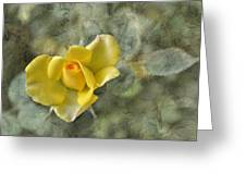 Yellow Rose With Old Marbel Texture Background Greeting Card