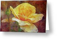 Yellow Rose With Raindrops 3590 Idp_2 Greeting Card