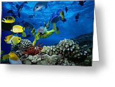 Yellow Scuba Diver Greeting Card