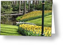 Yellow Spring Greeting Card