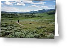 Yellow Stone Mountains Greeting Card