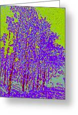 Yellow Trees D4 Greeting Card