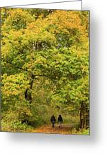 Yellow Trees In Fall Greeting Card