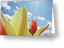 Yellow Tulip Flower Art Prints Spring Blue Sky Clouds Baslee Troutman Greeting Card