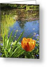 Yellow Tulip In Giverny  Greeting Card
