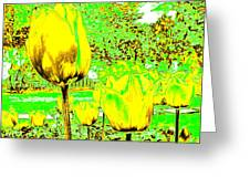 Yellow Tulips Abstract Greeting Card