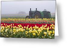Yellow Tulips And Tractors Greeting Card