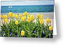 Yellow Tulips Near Lake Greeting Card
