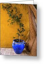 Yellow Wall, Blue Pot Greeting Card