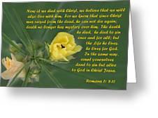 Yellow Wildflower - Romans Greeting Card