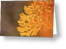 Yellow Xmas Tree Greeting Card