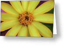 Yellow Zinn Greeting Card