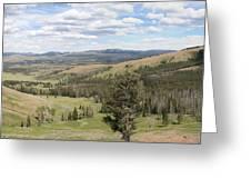 Yellowsotne Panorama Greeting Card