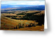 Yellowstone Greeting Card by Carrie Putz