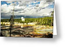 Yellowstone Colors #3 Greeting Card
