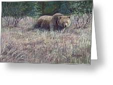 Yellowstone Grizzley Greeting Card