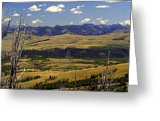 Yellowstone Landscape 2 Greeting Card