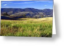 Yellowstone Landscape 3 Greeting Card