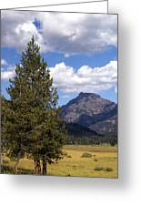 Yellowstone Landscape Greeting Card