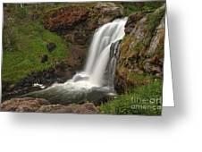 Yellowstone Moose Falls Greeting Card