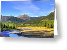 Yellowstone National Park Landscape Greeting Card