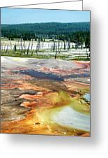 Yellowstone Park Firehole Spring Area Vertical 02 Greeting Card